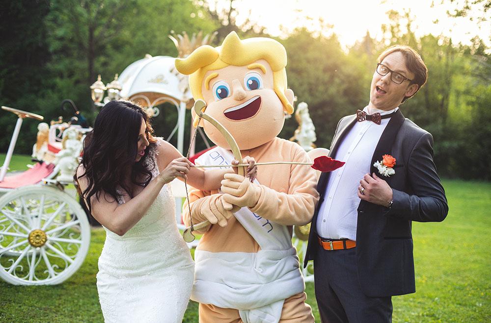 Sanjska poroka