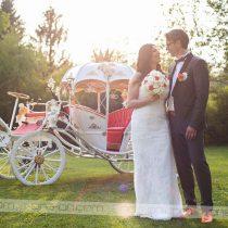Sanjska poroka 2018 ~ Mateja & Brane. Foto: Max Verderber